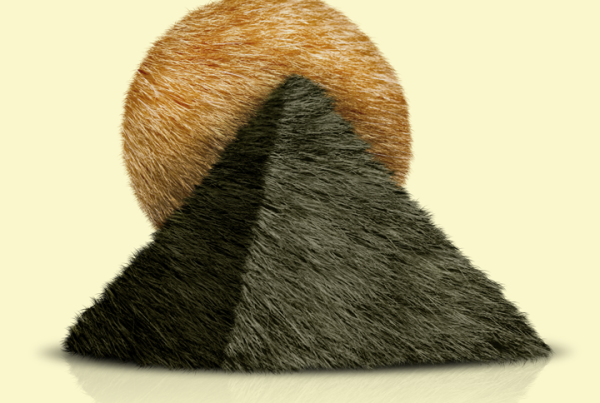 hairs_in_desert